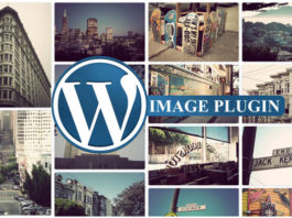 best wordpress theme image